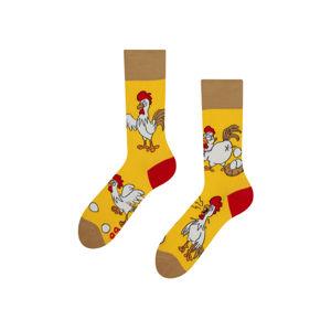 Žluté ponožky Chicken or the Egg