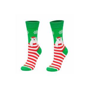 Červeno-zelené vzorované ponožky Teddy bear